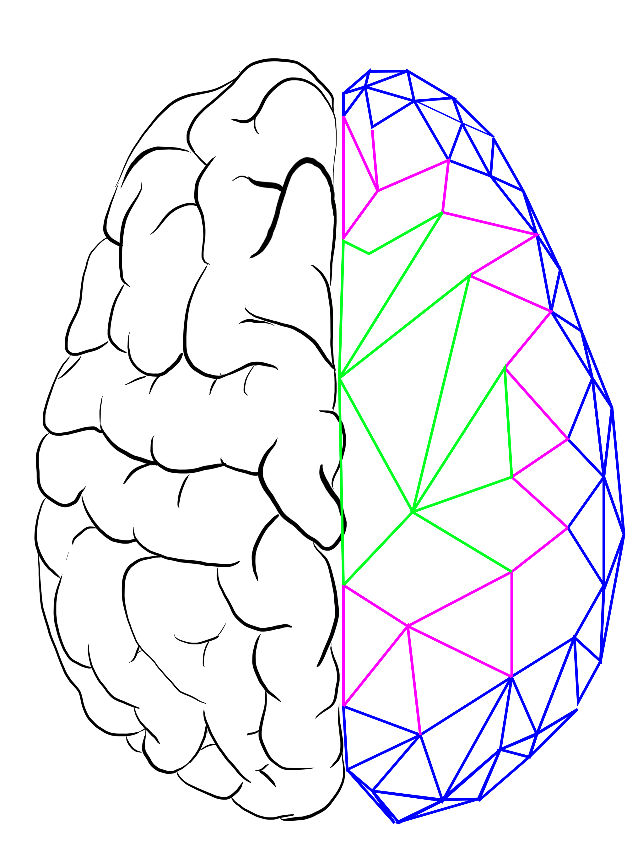 brain_two_png
